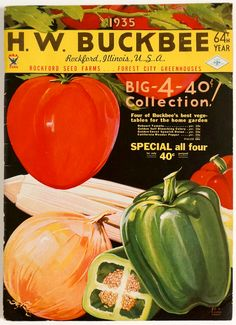 Your place to buy and sell all things handmade 1930s Kitchen, Vegetable Illustration, Forest City, Seed Catalogs, Fruits And Vegetables, Fruits And Veggies, Vegetable Painting