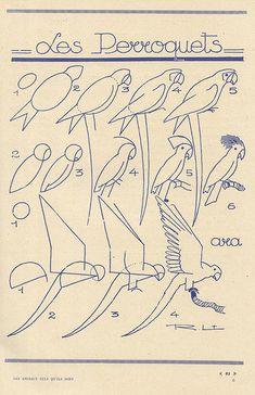 how to draw birds - french art tutorial