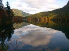Hinterer Langbathsee in Autumn/Fall