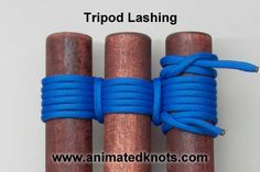 Http://www.paracordist.com Tutorial on Tripod Lashing Technique, for plants or get ambitious and build a tepee! #camping #survivalist #preppers