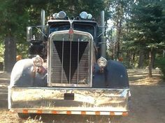 1957 Kenworth Truck 925 Model. Powered by a Cummins, small cam 350, 13 speed Road Ranger. Hard wood floor. Beautiful old truck indeed! Owned and refurbished by RIch Rankin, CA