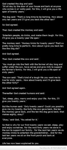 Funny Story God Creating Animals Humans
