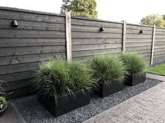 home exterior with black siding, painted black siding for modern exterior, modern landscaping, modern planters Shed Landscaping, Modern Landscaping, Black Rock Landscaping, Modern Backyard, Landscaping Design, Modern Fence Design, Modern Wood Fence, Modern Planters, Garden Landscape Design