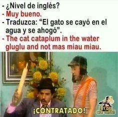 Humor Mexicano, Funny Memes, Lol, Baseball Cards, Cats, Fitness, Instagram, Jokes, Laughter