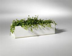 SMD - Utomhus / Jorda Window Box. Bredd 600 mm/1000 mm, höjd 160 mm, djup 200 mm