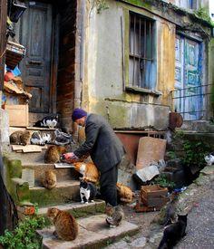 Cat lover, Istanbul, 2009 - by Orhan Tahtakılıç, Turkish