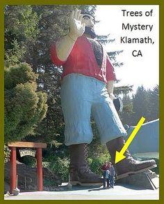 Trees of Mystery--Klamath, CA