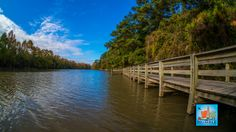 San Jacinto River - North of Lake Houston in Kingwood.  River Grove Park at the end of Woodland Hills Drive.