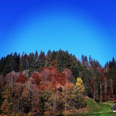 #herbst #schön #homesweethome #trub by retu34 Shots, Mountains, Nature, Pictures, Travel, Instagram, Fall, Nice Asses, Photos