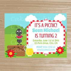 Picnic Party Picnic Party Invitations  Picnic Cards