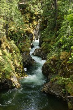 Little Qualicum Falls Vancouver Island, British Columbia, Canada. Photo by Kim Takes Photos on flickr