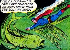 To be fair, dolphins on Krypton were a little...  different.