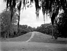 Originally built so the children of New Orleans would know what a hill was. In this 1938 photograph, Monkey Hill at Audubon Zoo was a simple mound of dirt covered with grass. Today it is a lavish play structure for kids and adults alike. - Photo By Works Progress Administration