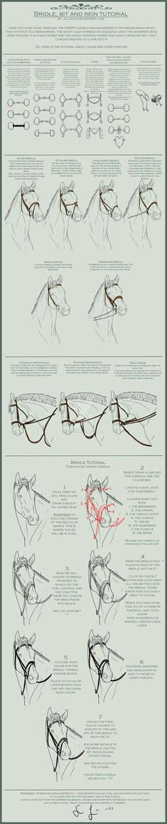 A tutorial, from me!!! Have you missed it? I warn you, huge file! Well, this time I learn you how to draw bridles, bits and reins. I got interested in it today when I saw pictures of horses which h...