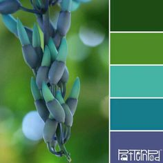 Palettes Inspired by Nature Inspired Trends & Color - Color Palettes Inspired by Nature - Inspired Trends & Color - Color Palettes Inspired by Nature - Colour Pallette, Color Palate, Colour Schemes, Color Combos, Color Patterns, Color Palette Green, Color Concept, Palette Design, Foto Picture