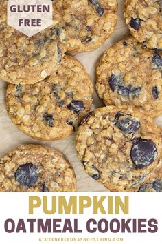 A perfect cookie for the holiday season!!! Soft and chewy pumpkin oatmeal cookies are packed with the season's spices and flavors! These easy cookies are gluten free, making them not only delicious but healthy too! Can be made with chocolate chips, raisins, dried cranberries or a combination of all three! Perfect for a Thanksgiving dessert too! #glutenfreecookies #holidaycookies #pumpkinrecipe #oatmealcookies Best Gluten Free Cookie Recipe, Gluten Free Pumpkin Pie, Pumpkin Muffin Recipes, Pumpkin Butter, Pumpkin Oatmeal Cookies, Oatmeal Cookie Recipes, Holiday Cookie Recipes, Sample Recipe, Celiac Recipes