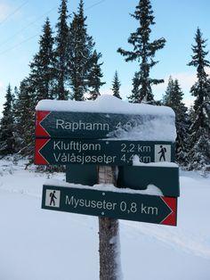 Ut på tur! Rondane Norway