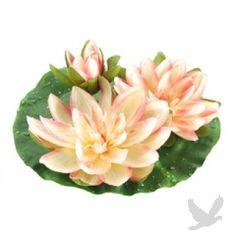 Large Floating Water Lily Flower Head w/Waterdrops, 2 Flowers, & 1 Bud - Peach
