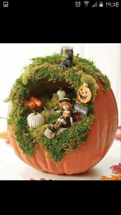 Mini witch home pumpkin