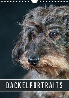 Funny Dogs Deko Dekoration Hund groß