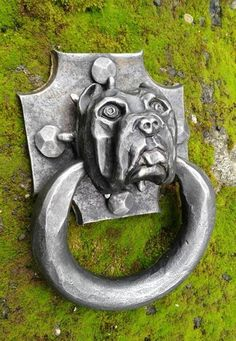 forged bull dog door knocker - Dominique Turano