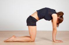 Les exercices à faire lorsque l'on à mal au dos - Les Éclaireuses