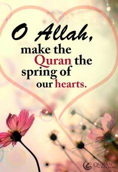 O Allah make the quran spring of our hearts #Allah