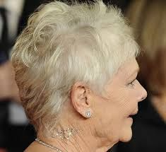 Image result for judi dench hair