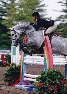 This jump and the horse reminds me of the look my mare had whenever she approached a jump or was in the center of one! She LOVED to jump and we were one.