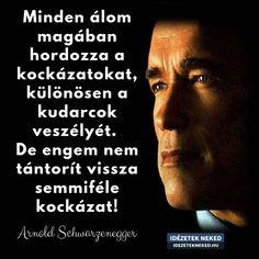 Arnold Schwarzenegger, Motivation, Memes, Quotes, Inspiration, Running, Quotations, Biblical Inspiration, Meme
