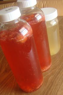 Nourished and Nurtured: How to Make Flavored Kombucha Tea