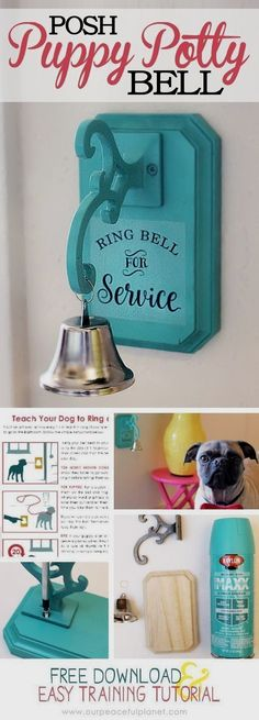 Dog Obedience Training - CLICK THE PICTURE for Lots of Dog Care and Training Ideas. #doglovers #dogcommandstraining