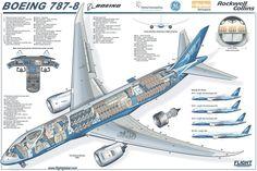 Boeing 787 Dreamliner Diagram