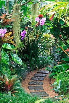Great Gardens with Graham Ross - Yahoo7