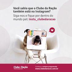 Faça parte do nosso Clube no Instagram! http://instagram.com/insta_clubedaracao