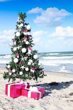 Pink and white coastal Christmas tree on the beach. Coastalicious! Christmas by the Beach: http://www.pinterest.com/complcoastal/christmas-by-the-beach/