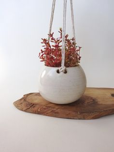 Small Hanging Planter - Hanging Vase for succulent plants - creamy White Handmade Ceramic hanging planter by viCeramics on Etsy