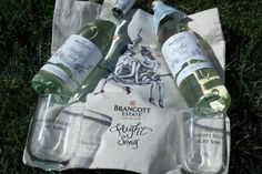 "Sit Back and Relax with Brancott Estate's New ""Flight Song"" Wines #BrancottEstate #FlightSong #Wines #MC #sponsored"