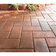 Holland Red/Charcoal Concrete Paver (Common: x Actual: x at Lowe's. The Holland Stone offers the old world charm of a simple paver shape. Red Brick Pavers, Brick Paver Patio, Concrete Porch, Paver Walkway, Concrete Pavers, Brick Patios, Stained Concrete, Paint Concrete, Patio Stone