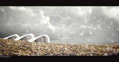 Leica_M8_Color_Profile