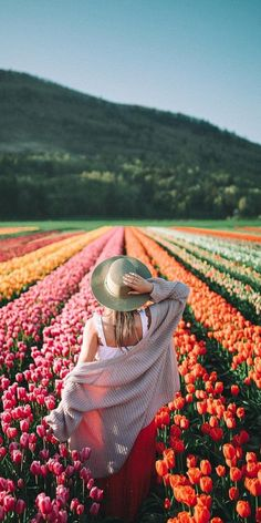spring time tulips in british columbia.🌷 through spring time tulips in british columbia.🌷 through Bryan Chandler spring time tulips in british columbia.🌷 through Bryan Chandler Photography Poses, Landscape Photography, Travel Photography, Digital Photography, Spring Photography, Beginner Photography, Pinterest Photography, Indoor Photography, Happy Photography