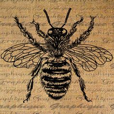 Large Bumble Bee Digital Image Download Sheet Transfer To Pillows Totes Tea Towels Burlap No. 2090
