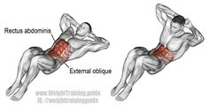 3*15 Crunch. An isolation exercise. Target muscle: Rectus Abdominis. Synergistic muscles: Internal and External Obliques. This is NOT an effective exercise for your abs. Visit site to learn which exercises are much more effective.