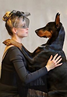 Dog, Doberman, Dog, Blonde Woman, Love #dog, #doberman, #dog, #blondewoman, #love