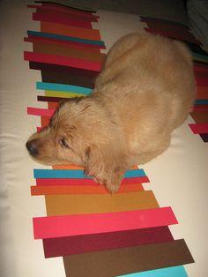 Rusty loves Anna Maria Horner fabric!