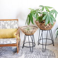 Plant Basket, Bamboo Basket, Furniture For Small Spaces, Home Decor Furniture, Welded Furniture, Rattan Furniture, Plant Table, A Table, Diy Coffee Table