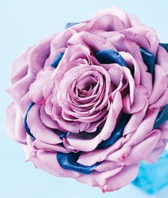 To build a composite bouquet, wire scores of cool-water rose petals—and a handful of tinted blue curiosas—around a single central flower.