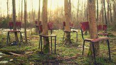 Скачать обои деревья, стулья, лес, ситуация, раздел ситуации в разрешении 1025x576