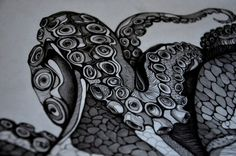 Little section of a new octopus I'm drawing. Full view coming soon..