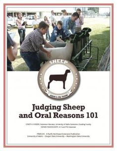 "Cover image of ""Judging Sheep and Oral Reasons"""